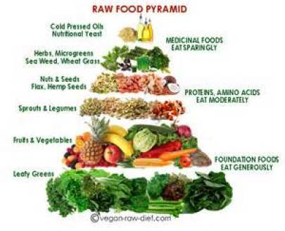 the raw food pyramid