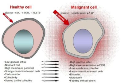 Cellular toxicity Causes Cancer ⁄ Cancer ~ Healing with Alternative