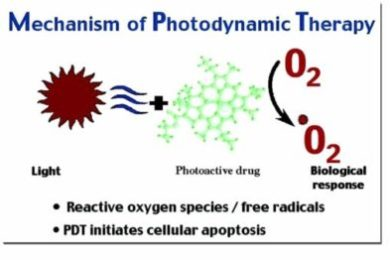 mechanism of photodynamic therapy