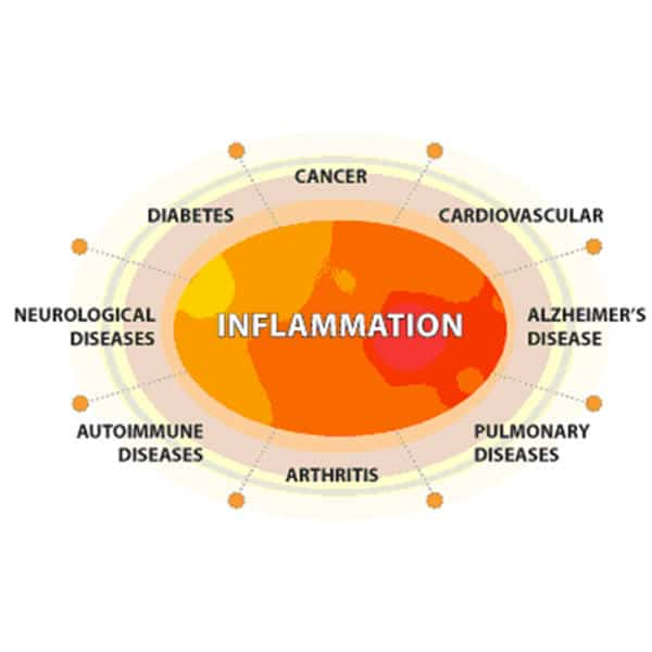 INFLAMMATION PROMOTES THE GROWTH OF CANCER