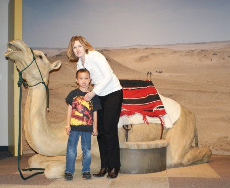 Science Center -- Not a real camel! :(