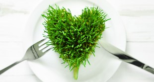 Ann Wigmore Wheatgrass Treatment for Cancer
