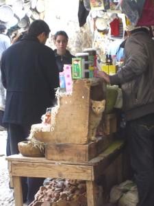 Solo in Morocco - a cat in a souk in Fez