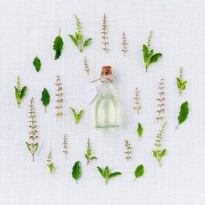 Design A Fragrance Workshop