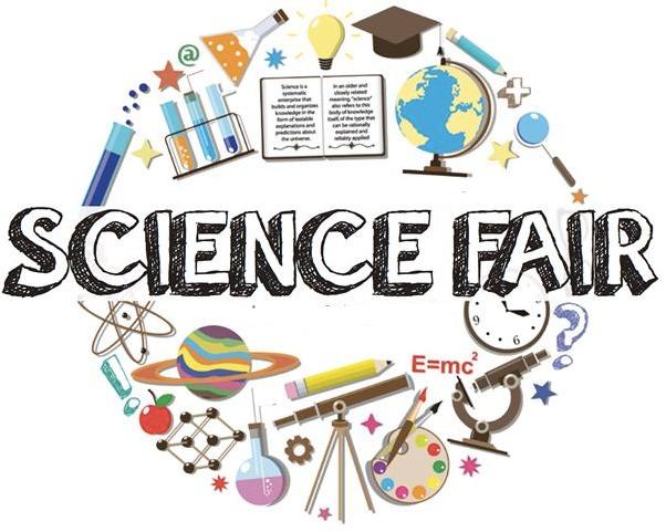 Science fair project conclusion Term paper Academic Service ...