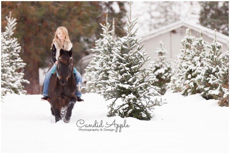 equine-kelowna-photographer_0005