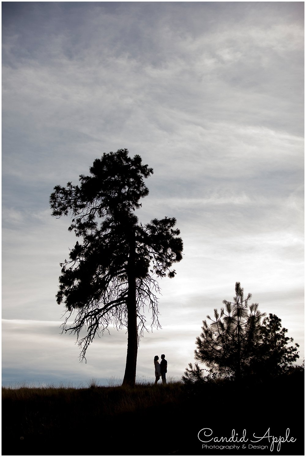 Kelowna_Bertram_Creek_Park_Engagement_Photographers__0023