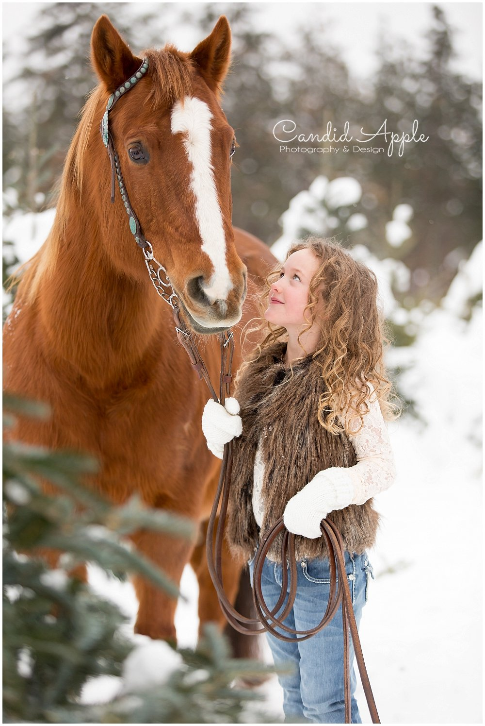 Kelowna_Winter_Equine_Photographers__0014