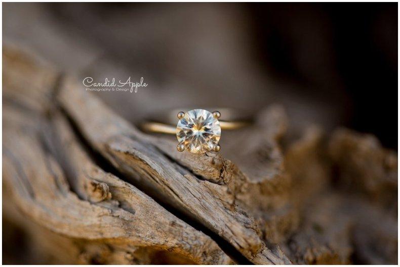 Hillcrest-Farm-Kelowna-Wedding-Photographers_0110