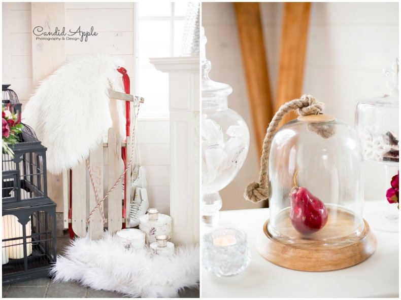 sanctuary-gardens-styled-winter-shoot-photographers_0010