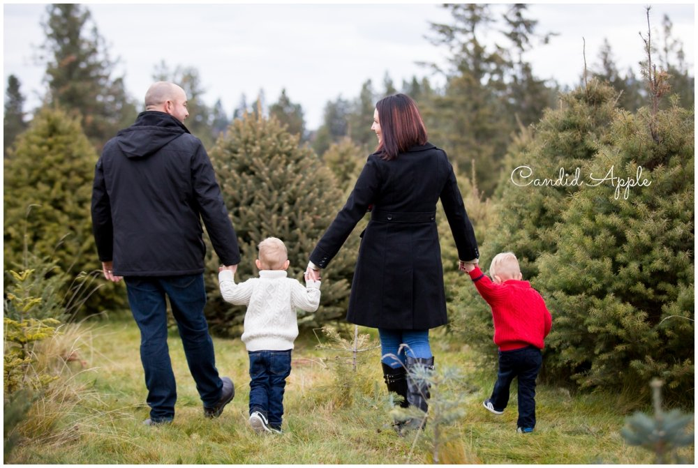 The Weller Family | Tree Farm
