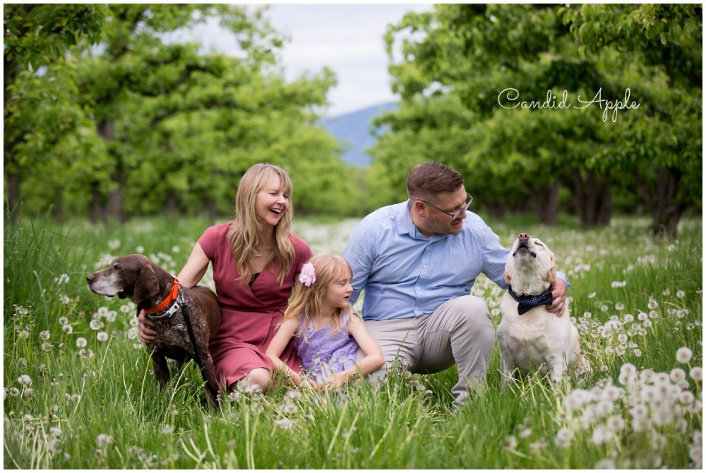 A family sitting in the grass with their two dogs
