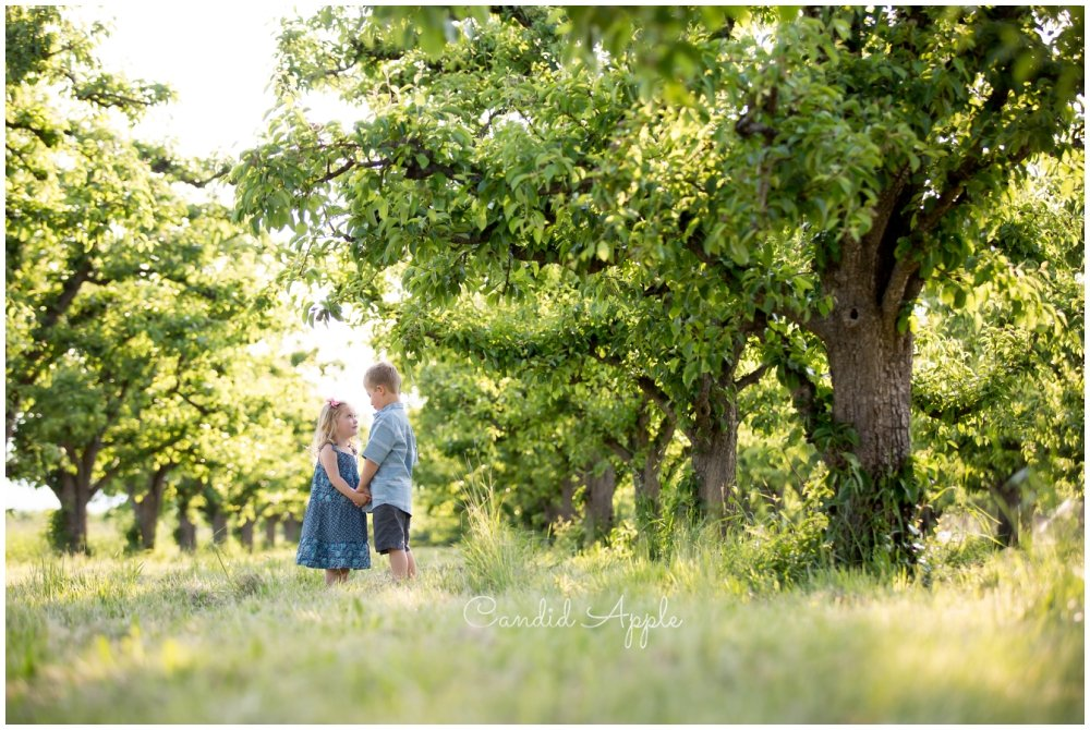 The Martin Family | Kelowna Summer Orchard