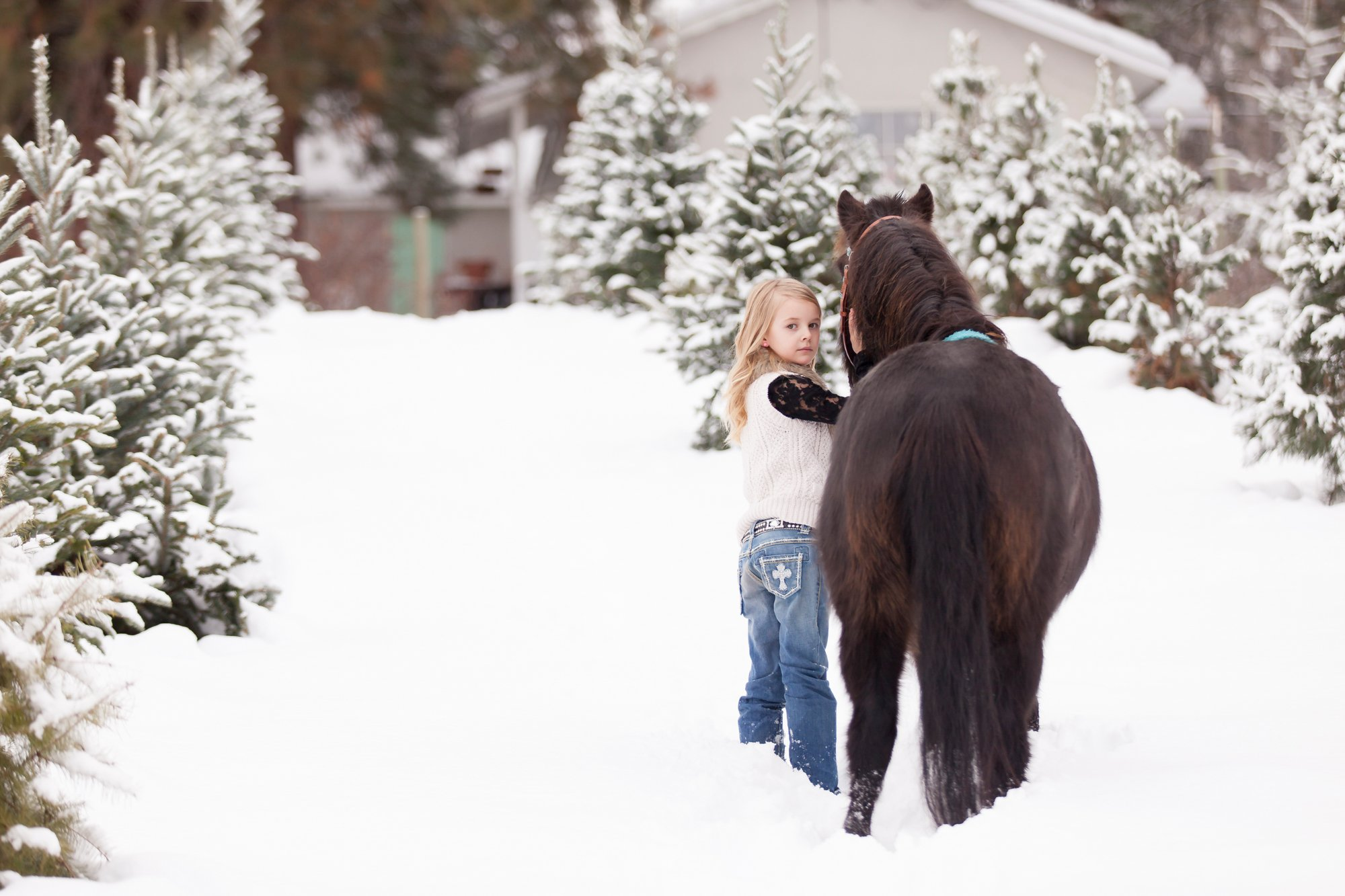 A girl with her black pony in the snow