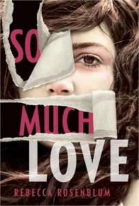 Book cover for So Much Love by Rebecca Rosenblum