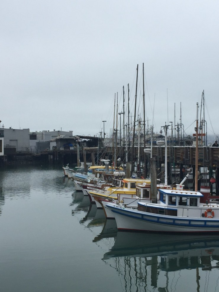 10 Things to Do at FISHERMANs WHARF and PIER 39, San Francisco