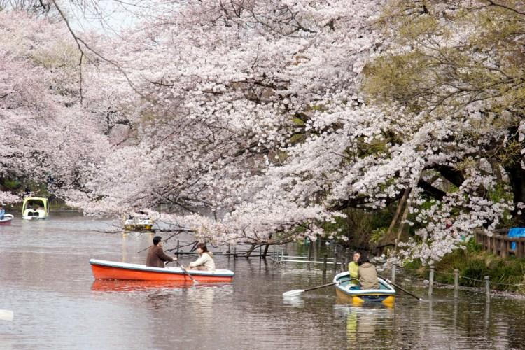 valentines day in japan 3