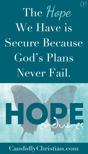 The hope we have is secure because God's plans never fail.