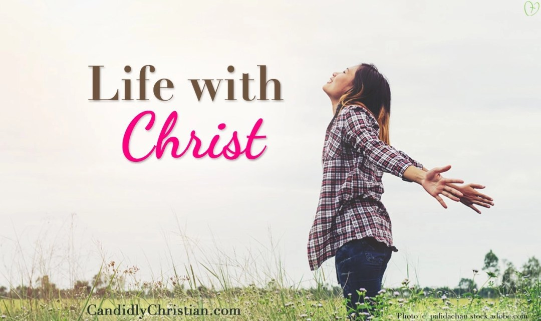We are like sheep among wolves, but we don't have to be when we have life with Christ.