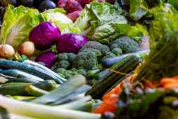 an-insight-into-the-healthiest-cooking-methods