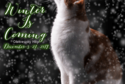 winter-is-coming-giveaway-hop-2019
