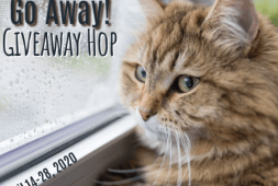 rain-rain-go-away-giveaway-hop-2020