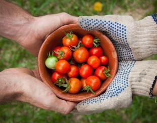 5-ways-that-gardening-improves-your-health