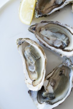 French_raw_oysters_candidsbyjo-111