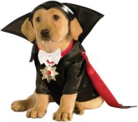 Cute Halloween Costumes for Medium Dogs That Are ...