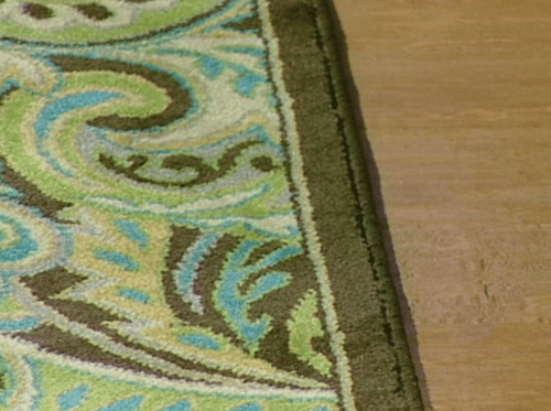 Area Rug Hardwood Floor Candace Rose Interview Elizabeth Mayhew Woman's Day candieanderson.com