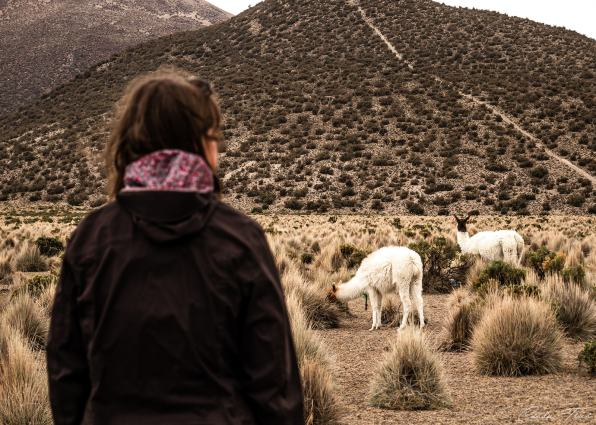 Altitude Bolivie