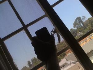 iPhone Unwrap 14