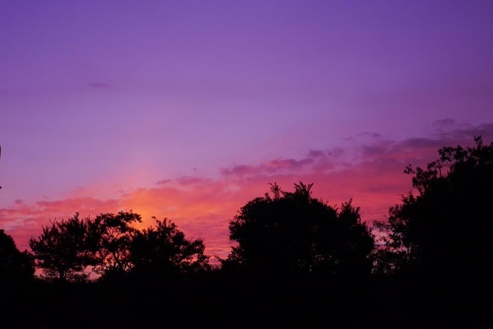 大阪の美しい夕日をバーベキュー場で