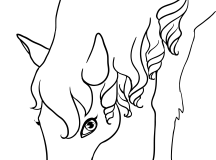Animal Coloring Pages of Animals Horse Coloring Pages
