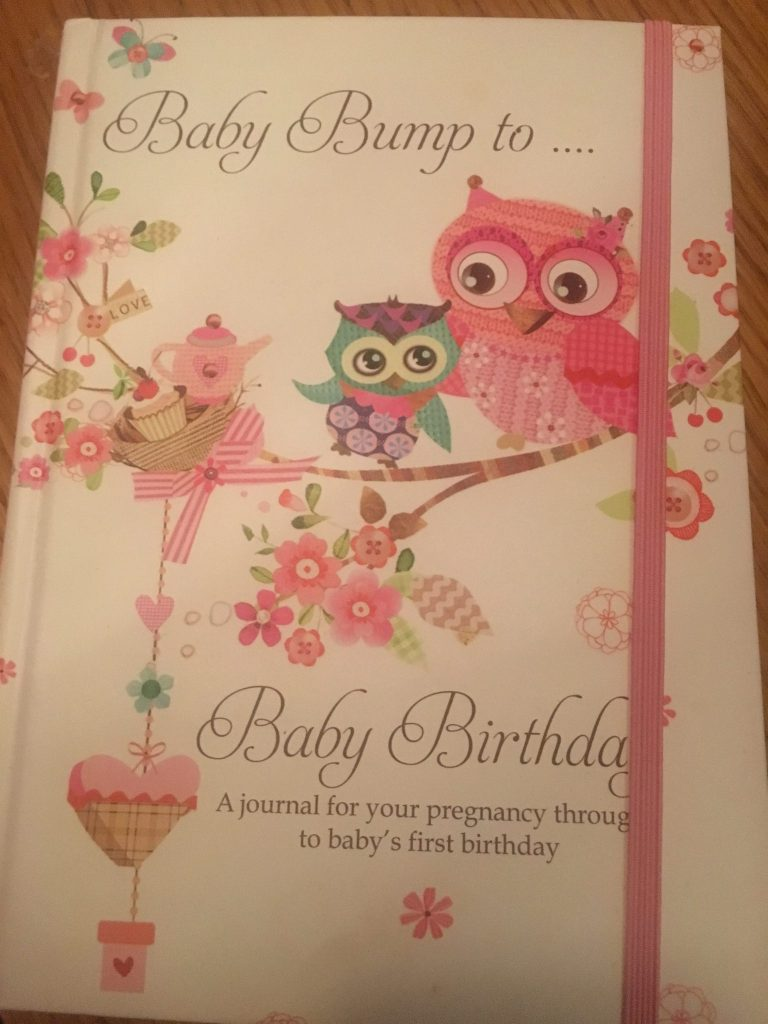 Baby Bump to Birthday Pregnancy Record Book with Owl Design
