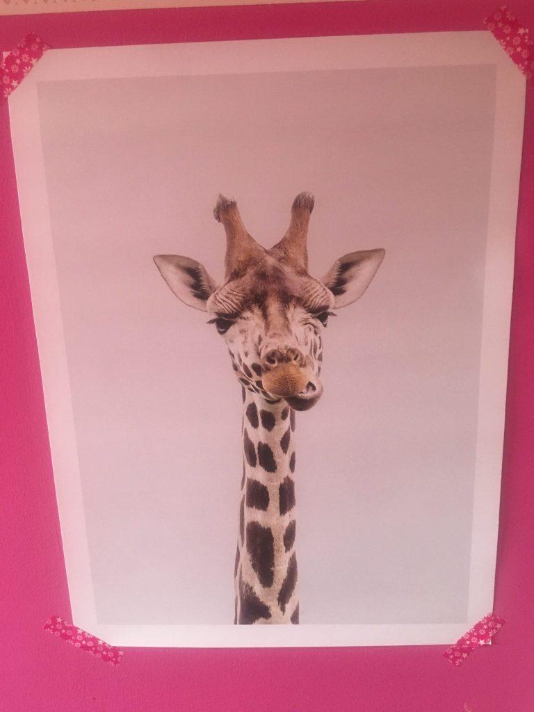 desenio giraffe poster