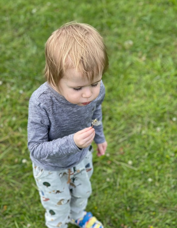 Felix, a toddler, is holding a dandelion outside in a field. He is wearing a long sleeved grey top and trousers with woodland animal motifs on them.