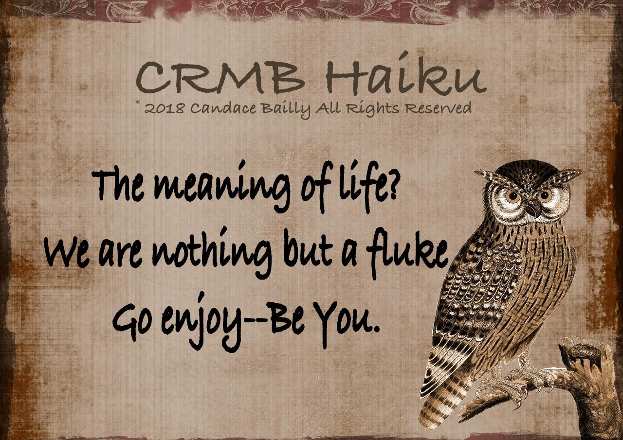 Meaning? – Haiku
