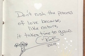 Don't rush the process  of love because, like nature,  it takes time to grow.