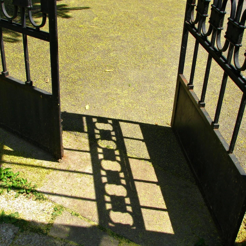 Entry – Haiku