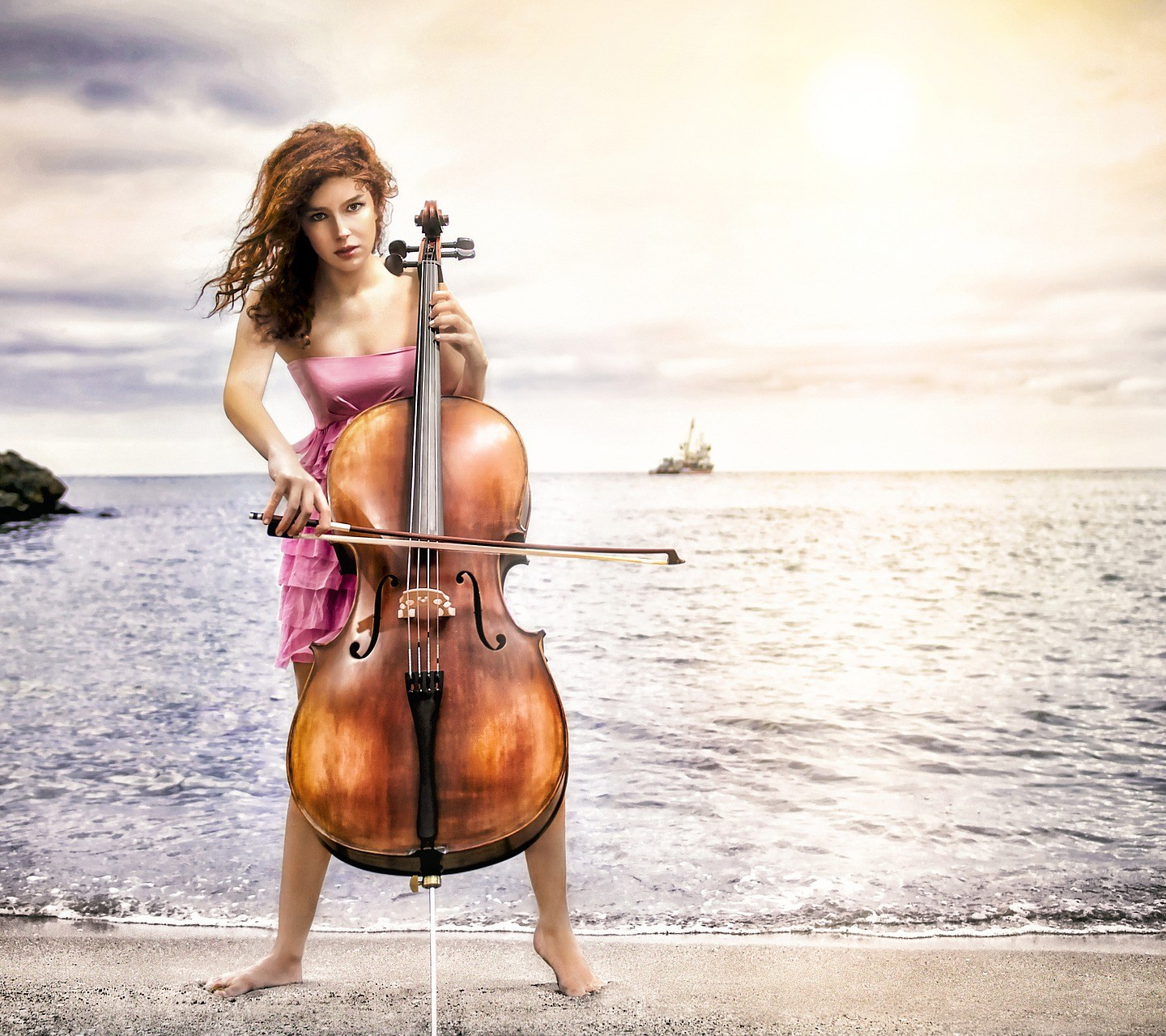 Cello – Haiku