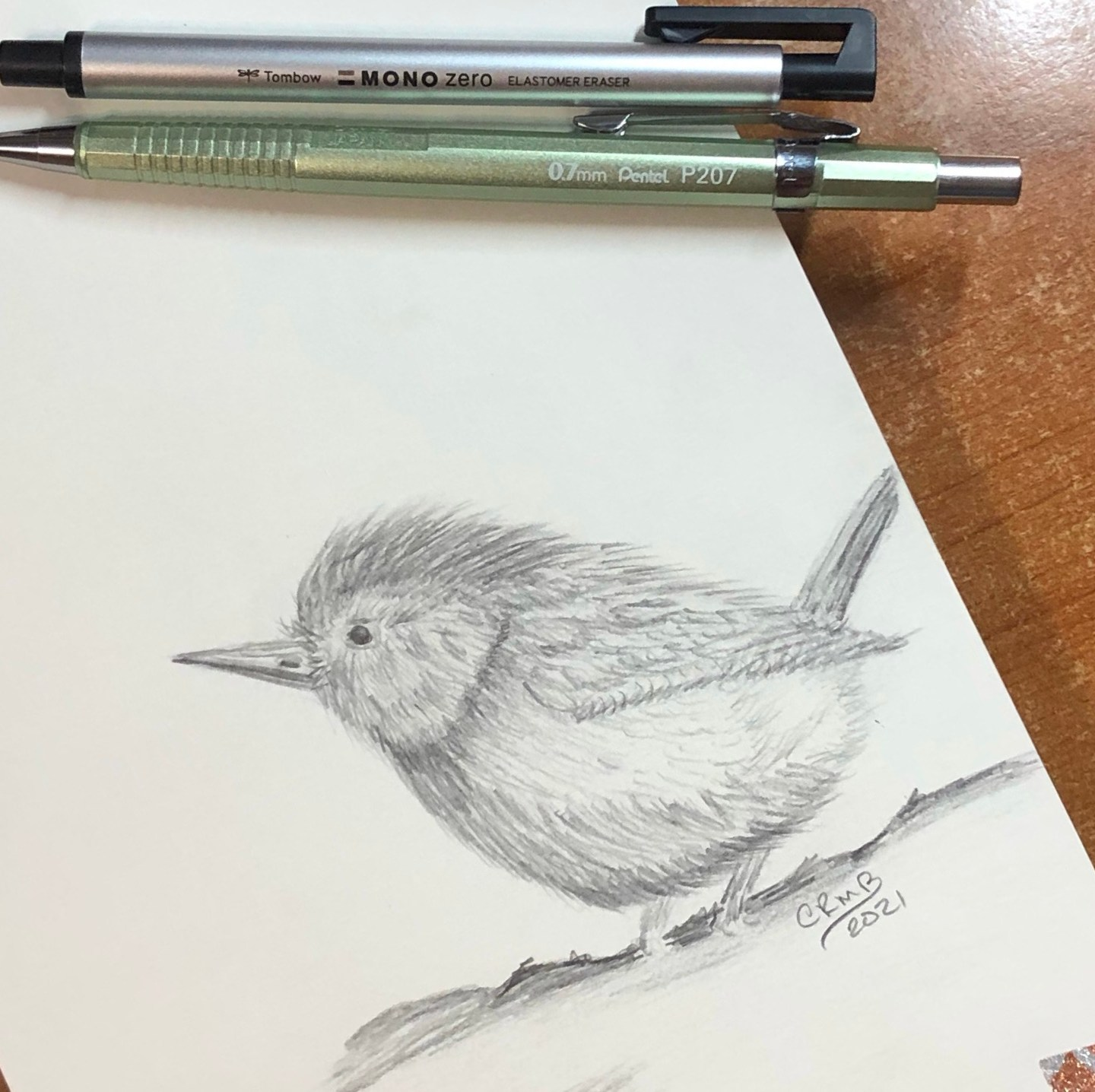 Bird & Spider – Sketch