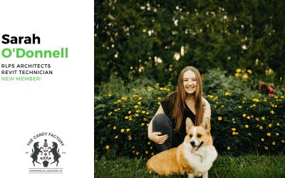 New Member Spotlight – Sarah O'Donnell