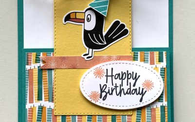 Bonanza Buddies Toucan Birthday