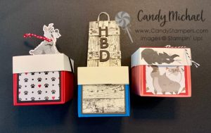 Paper Crafted Mini Explosion Boxes using Pampered Pets & Pallet Thoughts