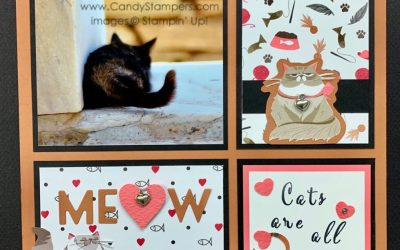 Playful Pets Suite Sampler & Card