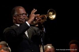 trompete208