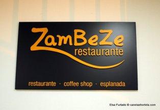 zambeze (1)