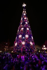 Christmas atmosphere_6