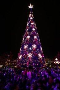 Christmas atmosphere_6